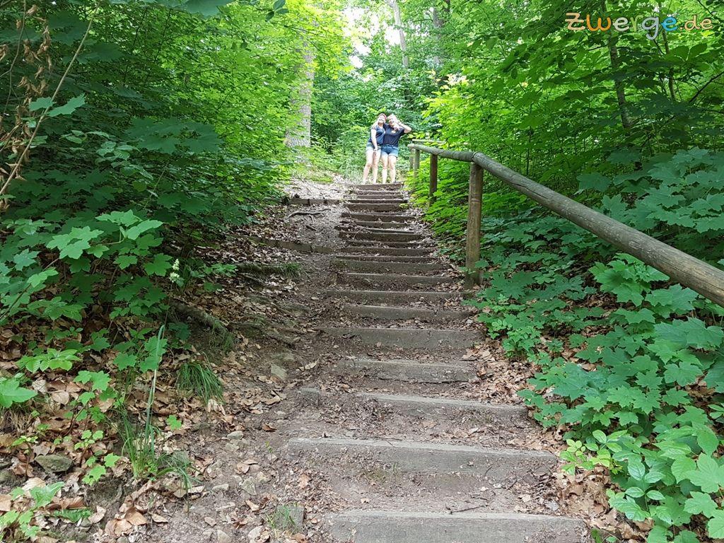 walderlebnispfad Heilbronn - Treppe