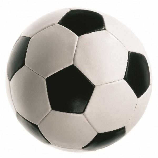 Fußball-Fieber Softball (1 Stück) ca. 8 cm