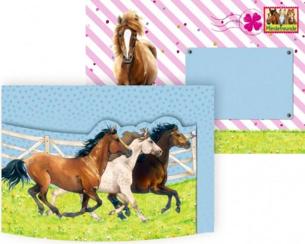 einladungskarten pferdefreunde 8 st  einladungen