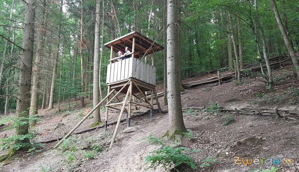 walderlebnispfad Heilbronn - Tiere des Waldes